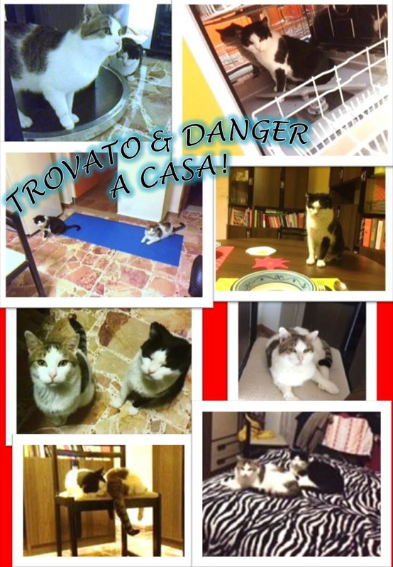 COLLAGE TROVATO & DANGER