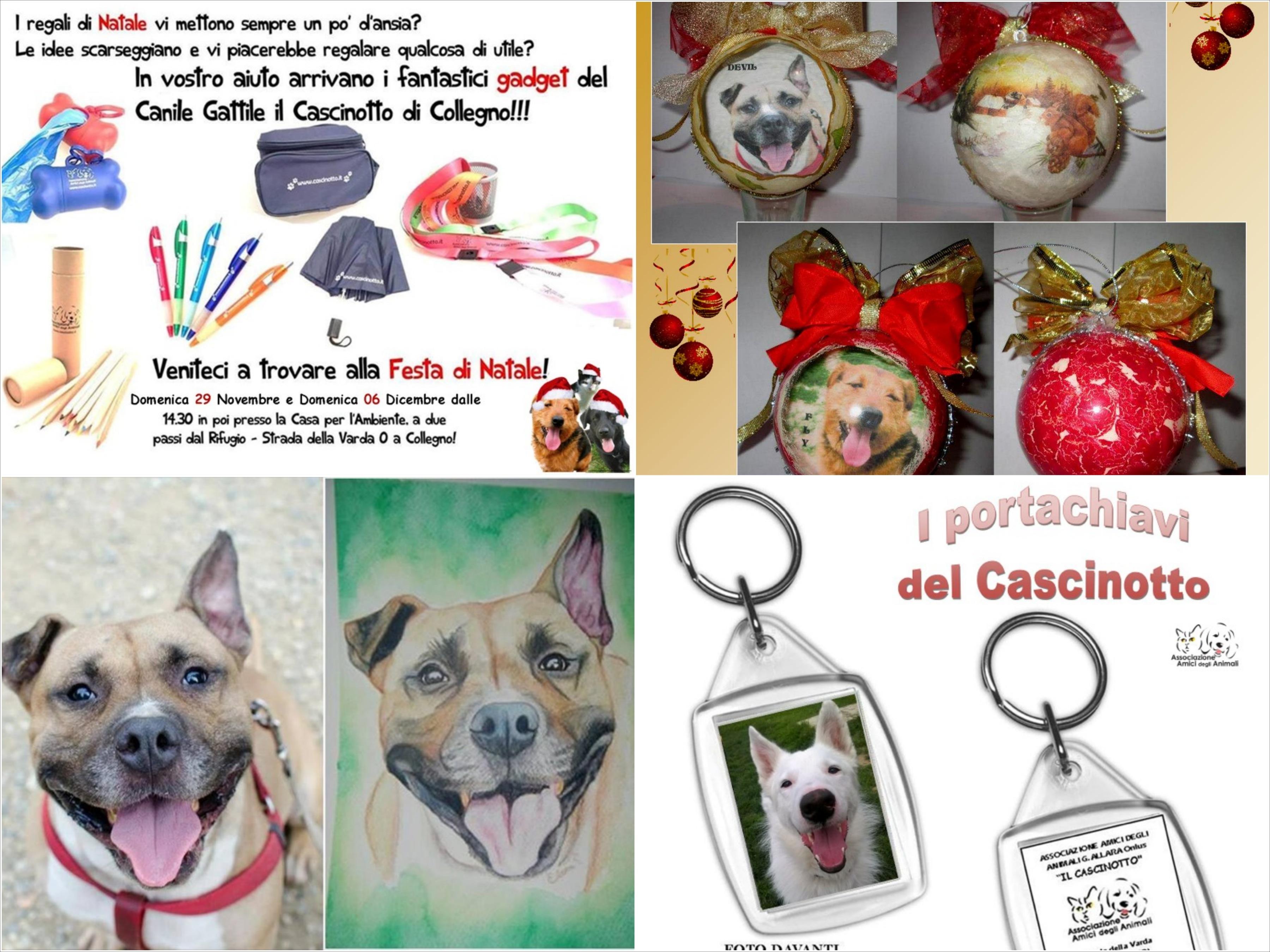 gadget_vari_cascinotto