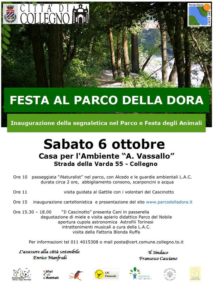 Festa Parco Dora 2018