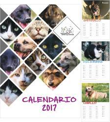 Calendari 2017: sono arrivati!