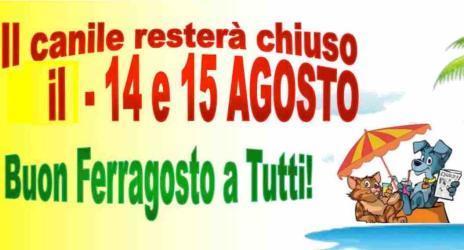 CHIUSURA CANILE - GATTILE FERRAGOSTO 2017