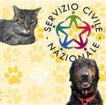 Servizio civile al Cascinotto di Collegno - partecipa al Bando!