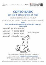 CORSO BASIC per cani di età superiore a 6 mesi