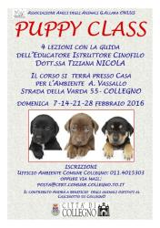 Puppy class: le date di febbraio!