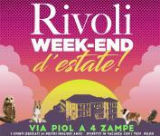 Via Piol a Rivoli questa estate è anche per gli amici a quattro zampe!