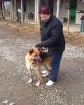 Buster adottato!