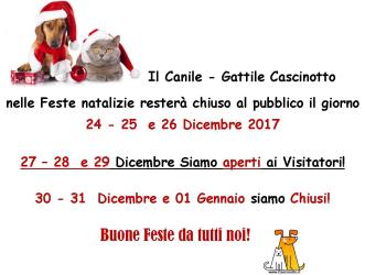 Aperture e chiusure Feste Natalizie 2017 - Cascinotto