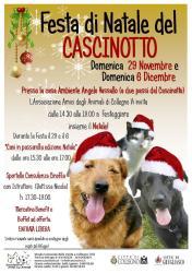 Festa di Natale del Cascinotto - 29 novembre e 6 dicembre 2015. Vi aspettiamo!