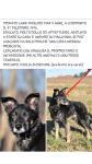 Si cerca con urgenza il proprietario o una adozione!